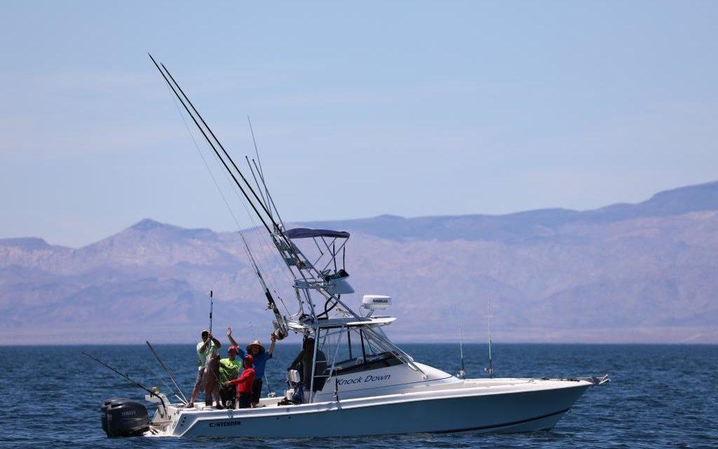 Registra Baja California récord de licencias para pesca deportiva