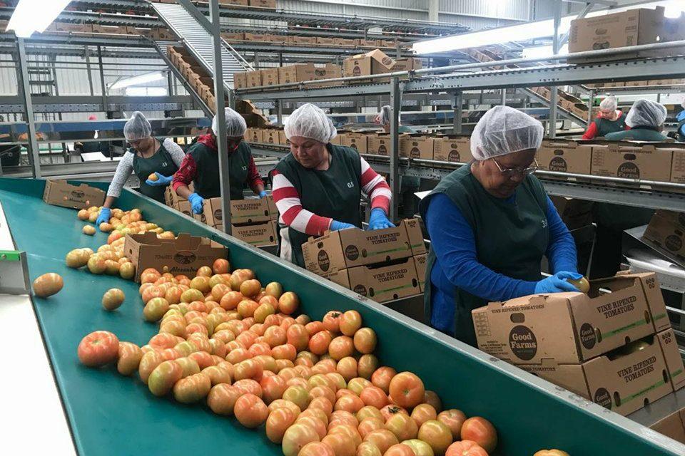 Asesoran a trabajadores referente al aumento del salario mínimo