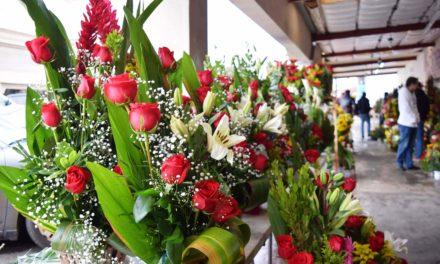Florerías de la calle México, opción de los cachanillas en San Valentín