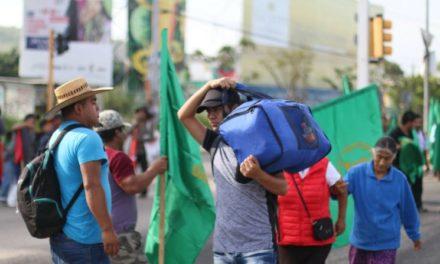 Marchas y bloqueos en jornada de protesta campesina en estados