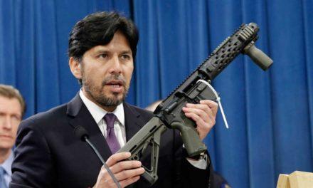 Coalición de estados de EU defiende derecho a regular armas