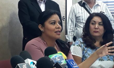 """Hasta las plantitas se llevaron"": Dip. Montserrat Caballero"