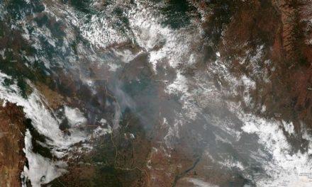 Bolsonaro niega haber acusado a ONG de incendiar la selva