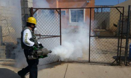 Colonia Hidalgo la que presenta mayor riesgo de casos de dengue