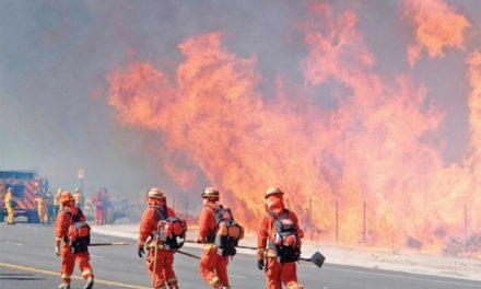 Alerta máxima por incendios forestales en California