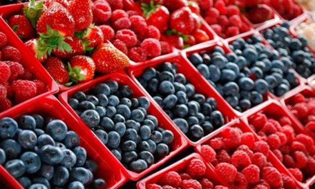 BC, tercer lugar nacional en producción de berries