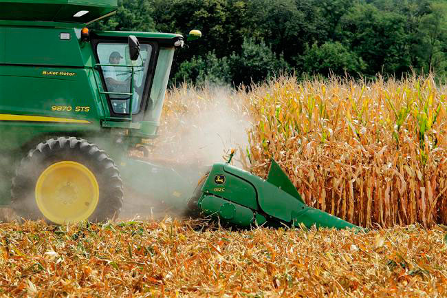 Publican reglas del programa Producción para el Bienestar, destinado a agricultores